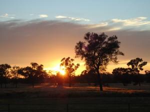 Farmarbeit Australien Sonnenuntergang